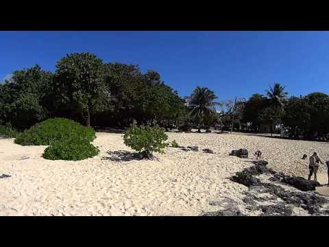 Smith Cove- Beach View