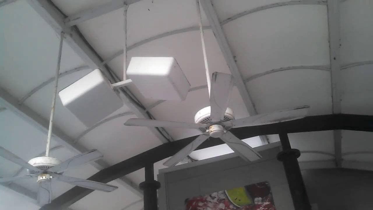 airwin ceiling fans at a sonic restaurant - youtube