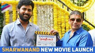 Sharwanand & Hanu Raghavapudi Movie Launch | #SharwaHanu | Vishal Chandrasekhar | Telugu Filmnagar