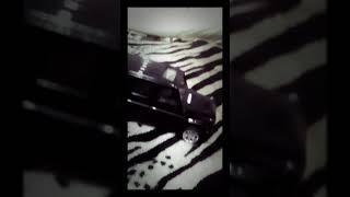 Елена Темникова ft. ST-Сумашедшый русский (клип гелик)