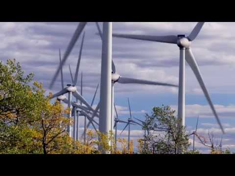 48. Bullfrog Power: Supporting green energy the easy way!