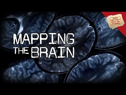 Mapping The Brain | Digging Deeper