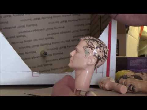 How I flocked up  Johnny West's Head