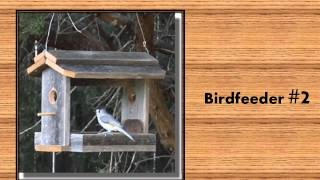 5 Diy Birdfeeder Woodworking Plans