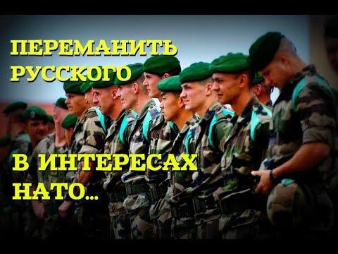 КАК РУССКИЙ ДЕСАНТНИК ОТКАЗАЛСЯ ОТ СЛУЖБЫ ВО ФРАНЦУЗСКОМ ИНОСТРАННОМ ЛЕГИОНЕ: Миротворцы в Югославии