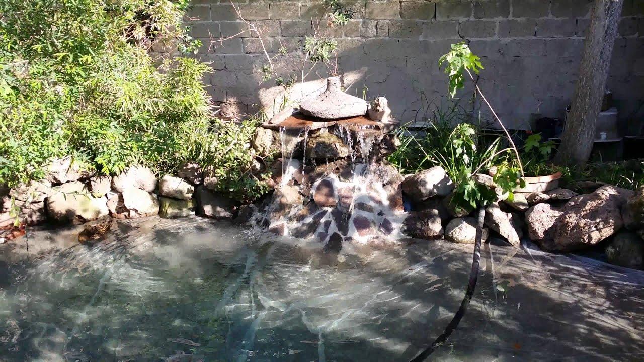 Il laghetto delle anatre youtube for Laghetto per anatre