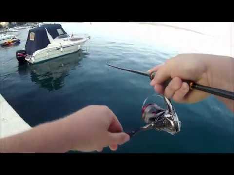 Adriatic Sea Shore UL Fishing For Horse Mackerel