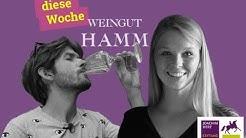 Folge 2: Weingut Hamm | selbst & ständig