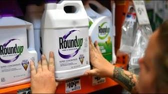Krebs durch Glyphosat: Monsanto muss Millionen zahlen