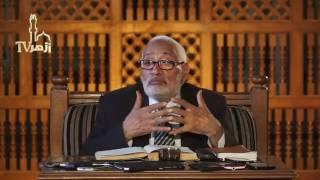 إشارة في قراءة الشعر | أ.د. محمد محمد أبو موسى