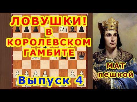Королевский гамбит 4 ♔ Шахматы и Шахматные Ловушки в дебюте ♕ Мат пешкой!