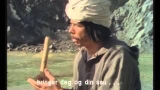 KLM - Tyrkisk fillespilm