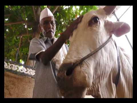 2 साल एक पड़ताल - वाह किसान | Wah Kisan - Success Story - 18 (Spot)
