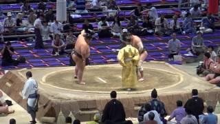 平成29年7月場所9日目取組結果一覧 (外部サイト:Sumo Reference) htt...