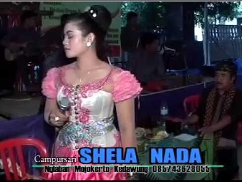 Ilat tanpo Balung Special Buat Semuanya Campursari Shela Nada