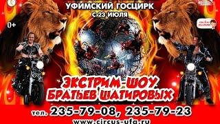 Экстрим шоу Шатировых