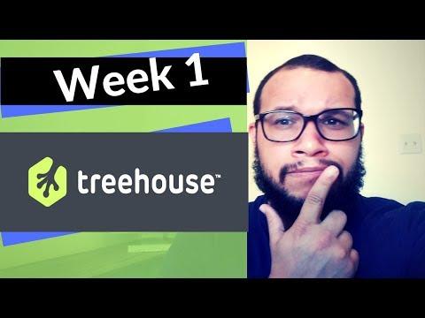 Team Treehouse Week 1