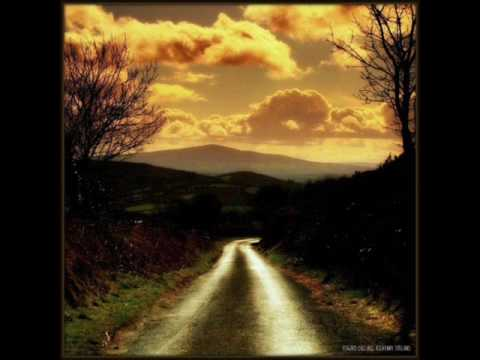 Irish Descendants - Rocky Road to Dublin