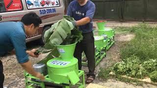 Máy băm chuối đa năng phiên bản mới nhất Okasu 2019 áp dụng trong chăn nuôi gia súc và gia cầm