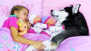 София и её истории для детей про Любимые игрушки и Собаку