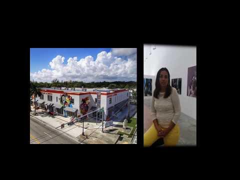 Brasileira abre Galeria de Artes em Miami/USA, ganha prêmios e promove artistas internacionais.