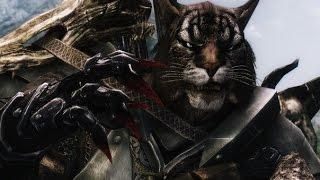 The Elder Scrolls V: Skyrim №3 Кот рукопашник-лучник
