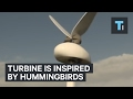 This wind turbine is inspired by a hummingbird