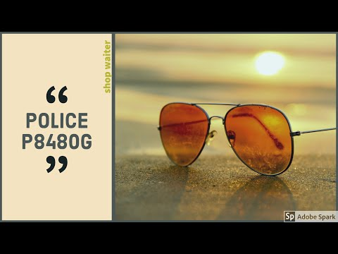 Police P8480G polarized sunglasses