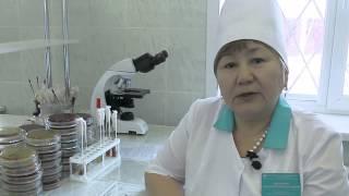 Бактериологическая лаборатория thumbnail
