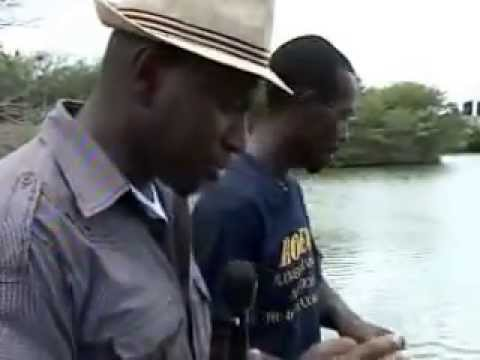 Tilagro Farm Antigua Interview on GMAB