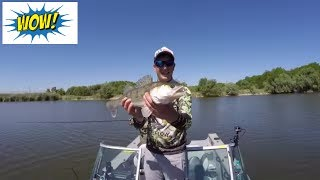 Река Понура. Удачная рыбалка на Кубани