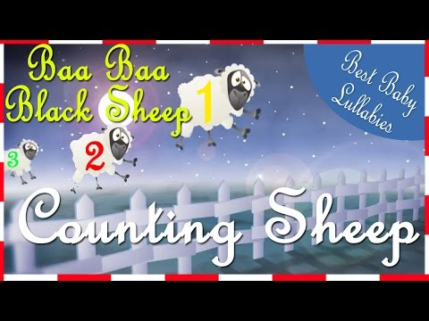 ♥ COUNT THE SHEEP - Nursery Rhymes Songs to Put Baby to Sleep  Baby Lullabies For Bedtime  ♥
