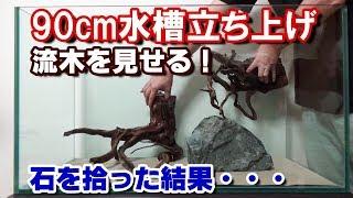 楽しい水槽素材集め【日本淡水魚水槽90#2】