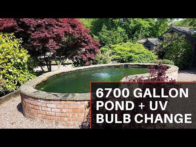 6700 Pond, Plus 110w UV BULB CHANGE!!