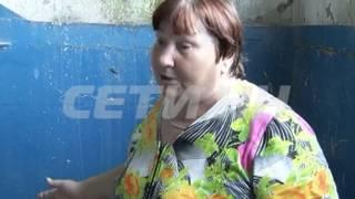 Дом призрак в Шатковском районе - там где должны жить люди, поселились птицы.