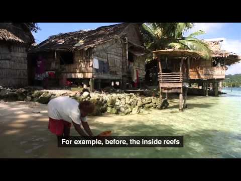 Community based fisheries management in Solomon Islands