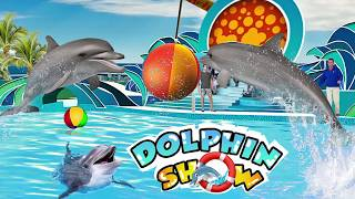 Water Park Dolphin Show Water World Dolphin Games