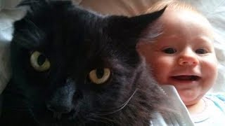 New Baby and Cat Fun and Fails - Funny Baby Video 2019