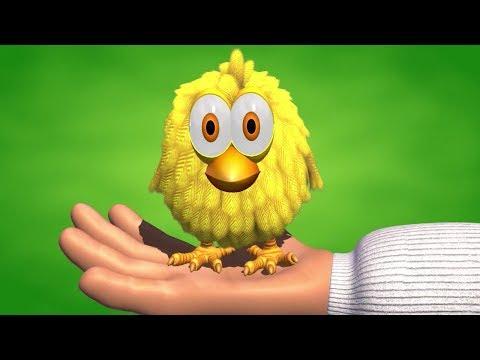 El Pollito Amarillito - Canciones de la Granja de Zenón 2