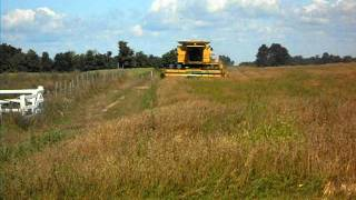 New Holland TR-99 in Oats 2011