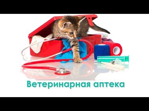 Ветеринарная аптека. Ветеринарная клиника Био-Вет