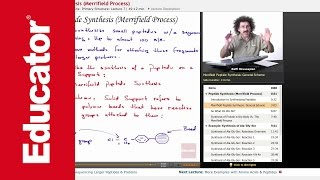 Peptide Synthesis: Merrifield Process | Biochemistry Tutorial