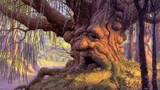 los 6 árboles  mas antiguos del MUNDO!│TOP-SAMA