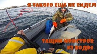 ВОТ ЭТО РЫБАЛКА ВЫТАСКИВАЕМ МОРСКИХ МОНСТРОВ
