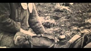 Трейлер фильма «Василий и Василиса» (1981 г.)
