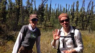 Merritt and her colleague Jennifer Baltzer talk about the impacts of permafrost thaw in northern wetlands.  Boots to the (soggy) ground science!