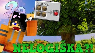 MINECRAFT'AS BE LOGIKOS?!