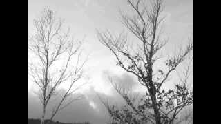 「寒空の毛細血管」 ~Capillaries of cold weather~(Use Track Yochk'o SEFFER 「Ghilgoul」)
