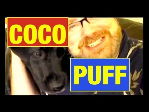 FARTING Dog!  FUNNY FAIL Toy Review by Mike Mozart and Funny Coco Puff of JeepersMedia