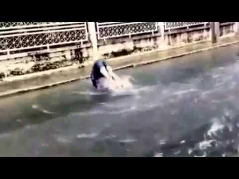 Funniest swimmer video ever #bangkok #funny #diver #floods